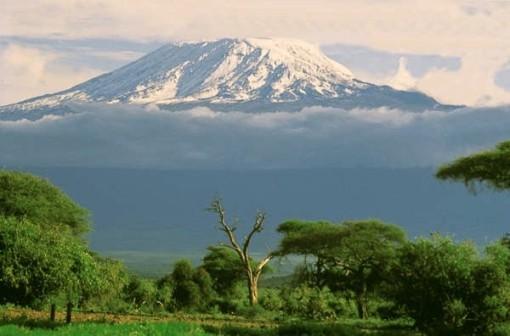 kilimanjaro3ferc1e81q.jpg
