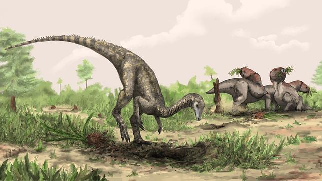 Nyasasaurus uiyrt8bc6hn4y5