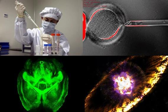 ciencia-2013 rctrweytre54r