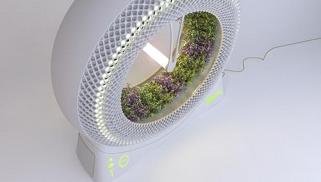 greenwheel-un-cultuvo-hidroponico-de-uso-casero wefjewhbrgh