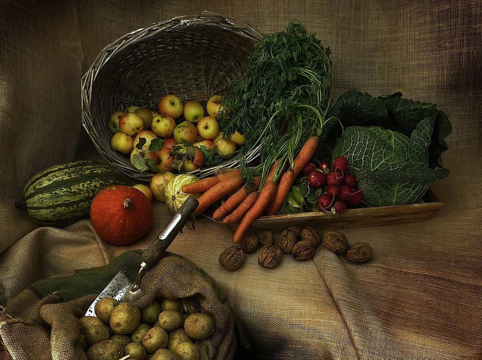 harvest-3679075_960_720 ktgrthiruthrkthrhnrtjk